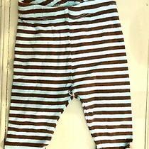 Baby Gap Blue Brown Striped Ruffle Pants 3-6m Photo