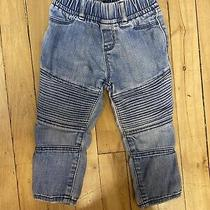 Baby Gap Blue Motorcycle Moto Jeans Toddler 2 Years   Photo