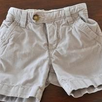 Baby Gap Boy Shorts 3 6 Months Photo