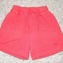 Baby Gap Boy Shorts Size 3 Years Photo