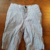 Baby Gap Boys 3-6m Blue Pin Stripe Lined Pants  Photo