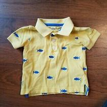 Baby Gap Boys 3-6m Yellow Whale Fish Short Sleeves Shirt Photo