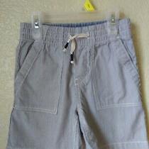 Baby Gap Boys Blue Striped Cotton Pull on Shorts Size 4 Euc Photo