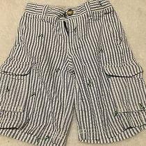 Baby Gap Boys Shorts Size 3 Years Striped Grasshopper Guc Photo