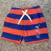 Baby Gap Boys Stripped Shorts - 6-12 Months Photo