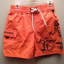 Baby Gap Boys Swim Suit Nwt Photo