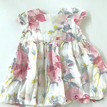 Baby Gap Cotton Infant Girls 6-12 Months Pink Blue Floral Dress Lined Photo