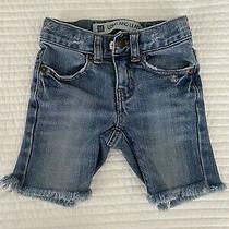 Baby Gap Distressed Denim Shorts Photo