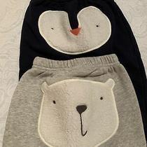 Baby Gap Fleece Pull-on Jogger Pant Lot of 2 Polar Bear Penguin 12-18m Navy Gray Photo