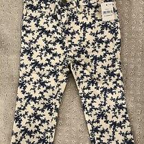 Baby Gap Girl Pattern Mini Skinny Pants Size 12-18 Months Photo