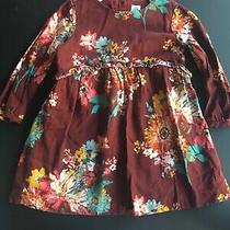Baby Gap Girls Dress 3 Years Maroon Floral Long Sleeve Photo