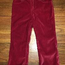Baby Gap Girls Red Velvet Boot Cut Dress Pants 2t Nwt Photo