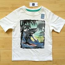 Baby Gap Graphic Tshirt Sz 4 Years (39-42 Inches 36-40 Lbs) Surfing Shark White  Photo