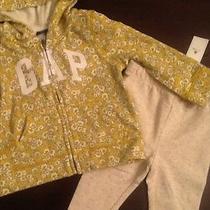 Baby Gap Hoodie Jacket Floral Fall Size 12 18 Nwt Baby Gap Polka Dots Leggings Photo