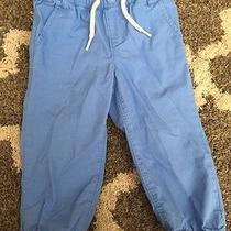 Baby Gap Light Blue Boy 18-24 Month Pants  Photo