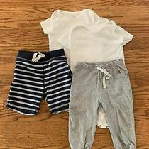 Baby Gap Lot of 4 Size 12-18 Months Photo
