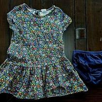 Baby Gapnavy Blue Floral Dress W/ Diaper Coverspringgirltoddler2 Years2t Photo