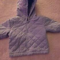 Baby Gap Newborn Light Blue Padded Jacket New Without Tag. Photo