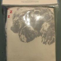 Baby Gap Pajama Set Long Sleeved Top & Bottom Sleeping Bear Size 2 Years Nwt Photo
