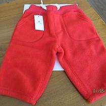 Baby Gap Pants Photo