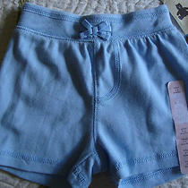 Baby Gap Size 3 to 6 Months Infant Brannans Blue Cotton Shorts New Girls Bottoms Photo