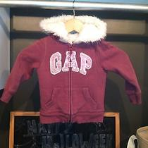 Baby Gap Sweatshirt 3t Photo
