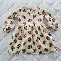 Baby Gap Toddler Girls Long Sleeve Floral Print Lined Cotton Dress Size 3t  Photo