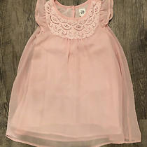 Baby Gap Toddler Girls Pink Lace Neckline Chiffon Flutter Dress Fully Lined Nwt Photo
