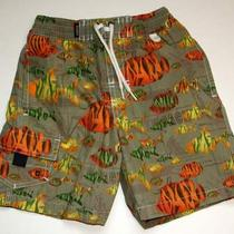 Baby Gap Tropical Fish Bathing Suit 2t Photo