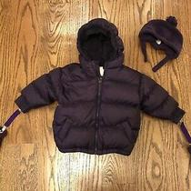 Baby Gap Warmest Winter Puffer Jacket Plum Purple W/ Hat & Mittens Size 12/24 Mn Photo
