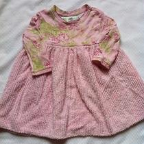 Baby Girls 18m Baby Lulu Pink Dress Photo
