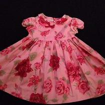 Baby Lulu Los Angeles Pink Roses Dress 18 Month Photo