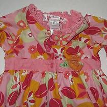 Baby Lulu Pink Floral Dress 2t 2  Photo