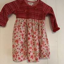 Baby Lulu Toddler Girls Size 3 Dress Euc Photo