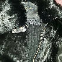 Baby Phat Jacket Photo