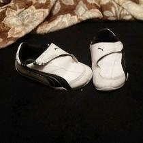 Baby Puma Shoes Photo