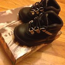 Baby Timberland Shoes Photo