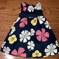 Baby Toddler Girl Baby Gap Navy Blue Pink Floral Dress 2t Photo