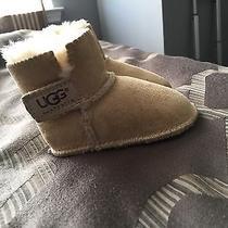 Baby Uggs Photo