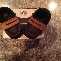Baby Uggs Moccasins Photo