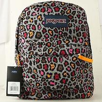 Back to School T501 Jansport Classic Backpack Grey Rabbit Lucy Leopard Photo