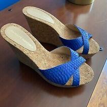 Badgley Mischka Blue Platform Wedge Heels Sandals Size 9 Photo