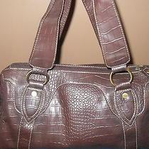 Bag (Tommy Hilfiger Bag) Photo