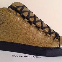 Balenciaga Arena Sneaker Embossed Rare Ocre 42 44 Yellow Gold Cotes Other Sizes Photo