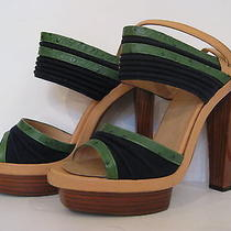 Balenciaga Green Navy & Tan Wood Heel Photo