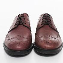 Bally Brown Brown Leather Shoes  Photo