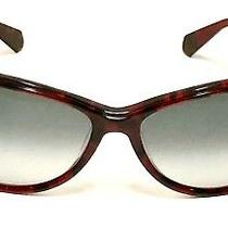 Balmain Ladies Burgundy Tortoise Butterfly Sunglasses W/case 56/15/135 Photo