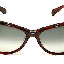 Balmain Ladies Burgundy Tortoise Butterfly Sunglasses W/case 56/15/135 Photo