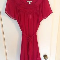 Banana Republic Pink Silk Holiday Dress Size Small Nwt Photo