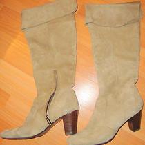 Bandelino Suede Boots Photo